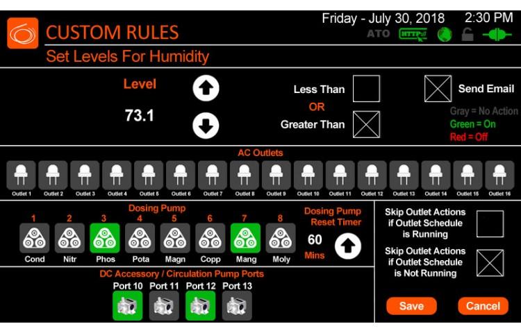 Custom Rules Options